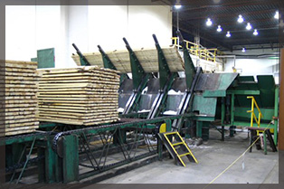 Dollar Saver Lumber Mill